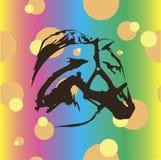 Horse on the orange balls Royalty Free Stock Images