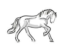 Horse outline silhouette sketch Stock Image