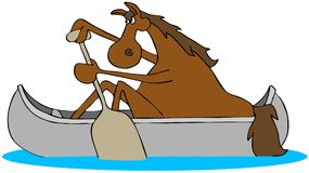 Horse paddling a canoe Royalty Free Stock Photography