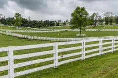 Horse Paddocks with White Fences Stock Photography