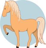 Horse Palomino Royalty Free Stock Photo