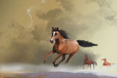 Horse panic attack Royalty Free Stock Photography