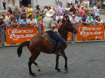 Horse parade Costa Rica Stock Photography