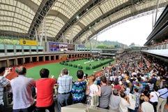 Horse Parade Ring Horse, Hongkong Horse Racng Club. People enjoy the horse parade ring. Photo took in Hongkong horse racing club, Oct 25, 2015 Royalty Free Stock Images