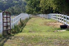 Horse path Stock Photo