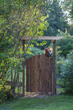 Horse Peeking Over Gate. A horse is quite interested in what is taking place on the other side of the fence royalty free stock photography