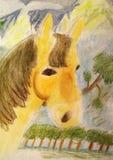 Horse pencil drawing. Original kid's drawing of horse Royalty Free Stock Photo