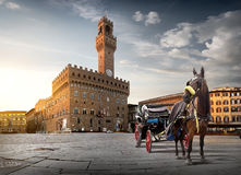 Horse on Piazza della Signoria. In Florence at dawn, Italy Stock Image