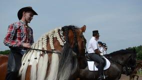 Horse plait mane cowboy stock video