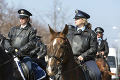 Horse police riding Stock Photo
