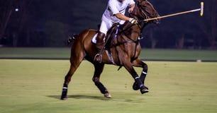 Night Polo Tournament. Horse Polo Player Riding In Night Polo Tournament Stock Images