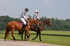 Horse polo umpires Stock Images