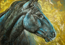 Horse portrait charcoal and pastels Royalty Free Stock Images