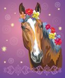 Horse portrait with flowers7. Vector colorful illustration. Portrait of bay horse with different flowers in mane isolated on purple gradient background with royalty free illustration