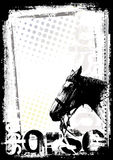 Horse poster background Royalty Free Stock Image