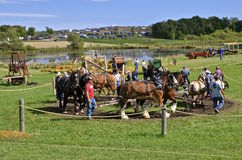 Horse Power threshing Royalty Free Stock Photography