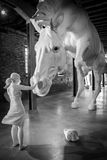 `The horse problem` - Claudia Fontes Stock Photo