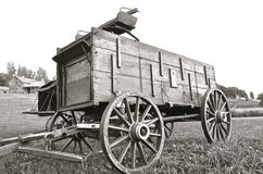 Horse pulled buckboard and wagon (black and white) Royalty Free Stock Photo
