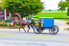 A horse pulling a cart across Stock Photography