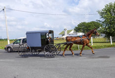 A horse pulling a cart across a beautiful Saskatchewan landscape Stock Photos