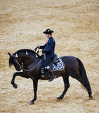 Horse of pure breed. Real equestrian gala Held on June 16 of 2012 in Jerez de la Frontera. Rider dressed with traditional dress riding a black horse of pure Royalty Free Stock Photography