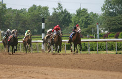 Horse Race. Horses racing at a racetrack, nice stop action Royalty Free Stock Images