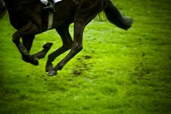 Horse race. Panning of running horse during horse race with vignette Royalty Free Stock Photography