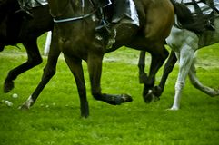Horse race. Running horses during a horse race competition in blur motion Royalty Free Stock Images