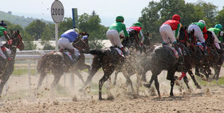Horse race. PYATIGORSK, RUSSIA - JUNE 5: Unidentified riders and their horses compete for the The race for the prize of the Afins Wuda on June 5, 2011 in Royalty Free Stock Photography