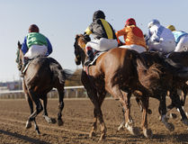 Horse race. Closeup of racing horses starting a race Stock Photo
