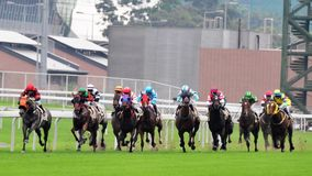 Free Horse Race Royalty Free Stock Images - 24753209