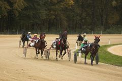 Horse race. In slovenian small town Stock Photos