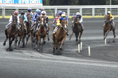 Horse race Royalty Free Stock Photography