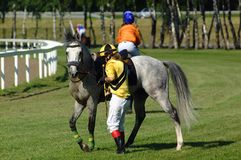 Horse race. Jockey standing by the horse Stock Image