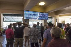 Horse race betting in a casino. HALLANDALE BEACH, USA - MAR 11, 2017: People betting on horse races in the Gulfstream park casino in Hallandale Beach. Florida royalty free stock images