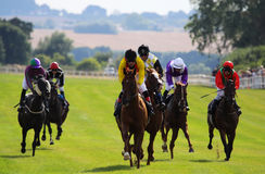 Horse Race 2013c Royalty Free Stock Photos