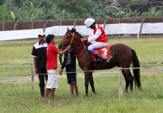 Horse race. Coaches prepare before attending a race horse in a field in Sukoharjo, Central Java, Indonesia royalty free stock images