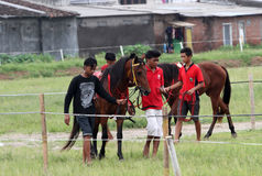 Horse race. Coaches prepare before attending a race horse in a field in Sukoharjo, Central Java, Indonesia stock photography