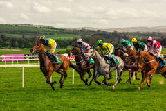 Horse race competition jokey winning. Success royalty free stock image