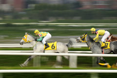 HORSE RACE FINISH Royalty Free Stock Images