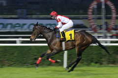 HORSE RACE FINISH. Finish of a horse race with panning effect. Horse racing results for April 14 is as follows. veliefendi, istanbul Stock Photography