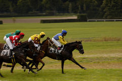 Horse race finish. Final rush in a steeplechase horse race Royalty Free Stock Photo