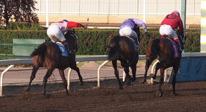 Horse Race Finish Stock Photos