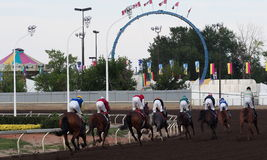 Horse Race Finish Stock Photography