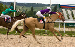 Horse race finish. PYATIGORSK,RUSSIA - JULE 13:Race for the prize of the Absenta,Jule 13,2014  in Pyatigorsk,Northern Caucasus, Russia Royalty Free Stock Photography