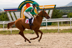 Horse race finish. PYATIGORSK,RUSSIA - JUNE 29:The race for the prize of the Sprinterski, June 29, 2014 in Pyatigorsk, Caucasus, Russia Royalty Free Stock Photo