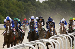 Horse race finish. PYATIGORSK, RUSSIA - MAY 22: Start gates for horse races for the prize of Letni in Pyatigorsk, Caucasus, Russia on May 22,2016 Royalty Free Stock Images