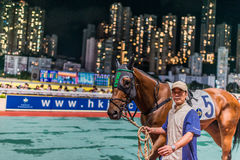 Horse race Happy Valley racecourse Hong Kong Royalty Free Stock Photography