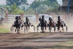 Horse race at hippodrome royalty free stock photos