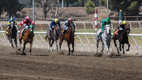 The Horse Race. Jockeys compete with their horses  at the Cal Expo horse races in Sacramento California Stock Photo